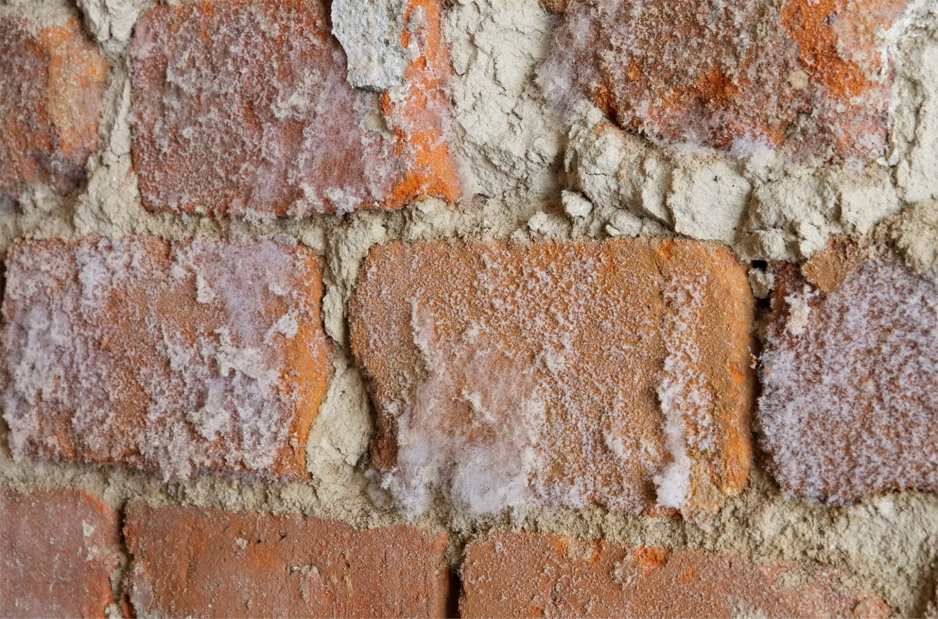 Old Brick Foundation Wall